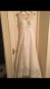 Vienna Cotte Lace Wedding Dress